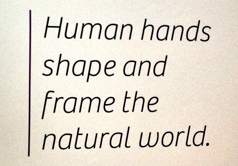 Human hands shape and form